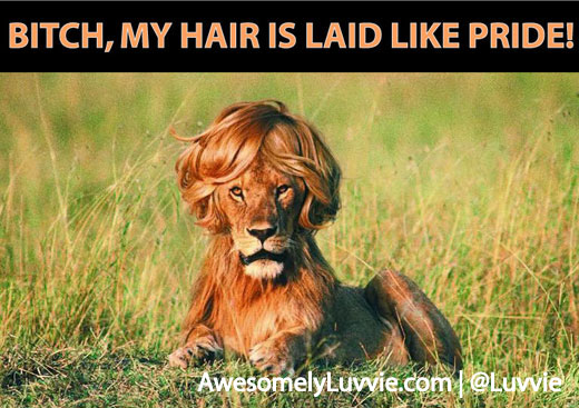 Bitch Pride Lion Hair is Laid